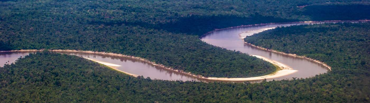 Meander in the Amazon